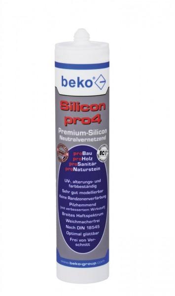 Silicon_pro4